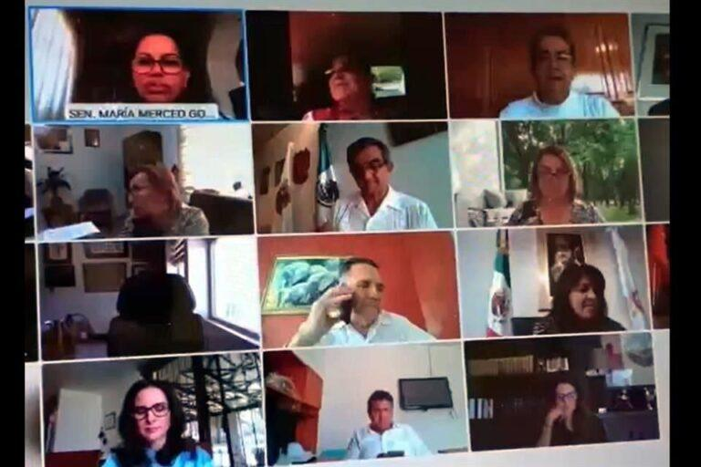DPC: Senadora María Merced filtra información de Morena por error en sesión virtual
